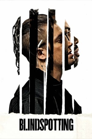 Image Blindspotting