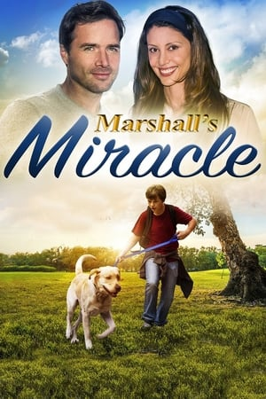 Image Marshall's Miracle