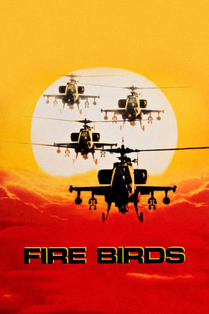 Image Fire Birds