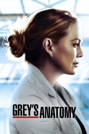Poster Grey's Anatomy 2005