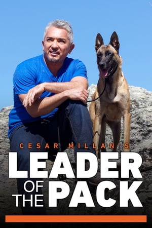 Image Cesar Millan's Leader of the Pack