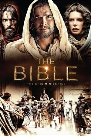 Image The Bible
