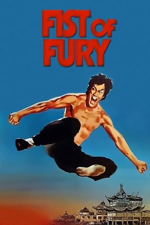 Image Fist of Fury