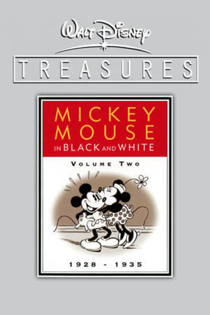 Image Walt Disney Treasures - Mickey Mouse in Black and White, Volume Two