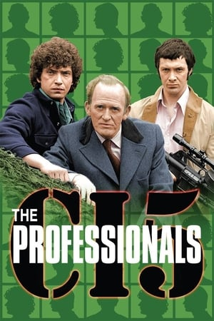 Image The Professionals