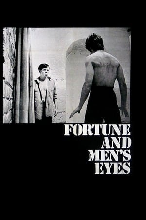 Image Fortune and Men's Eyes