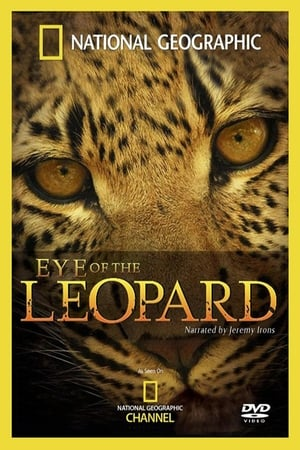 Image Eye of the Leopard