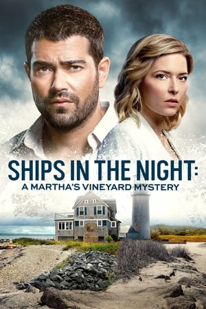 Image Ships in the Night: A Martha's Vineyard Mystery