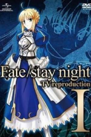 Image Fate/stay night: TV reproduction