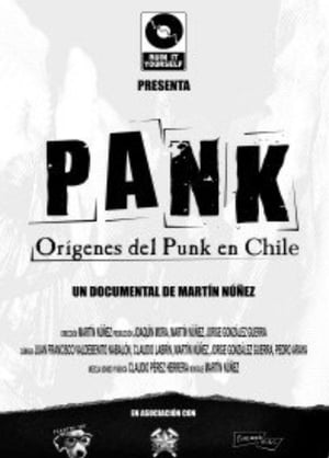 Pank : Origins of Punk Music in Chile