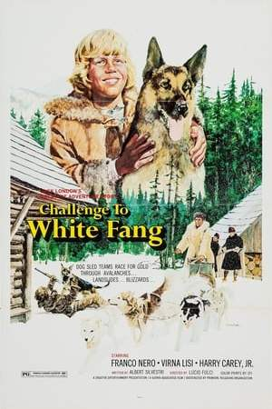 Image Challenge to White Fang
