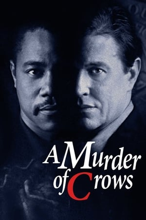 Image A Murder of Crows