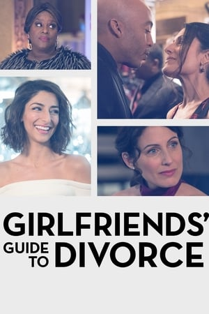 Image Girlfriends' Guide to Divorce