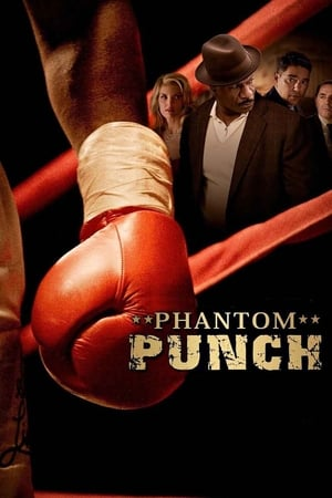 Image Phantom Punch