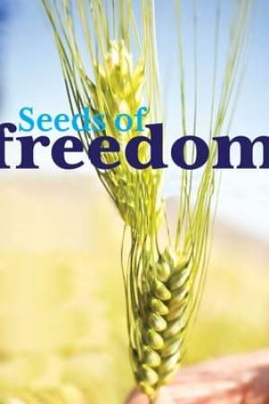 Image Seeds of Freedom