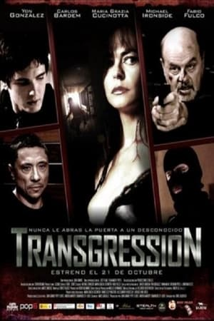 Poster Transgression 2011