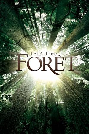 Il était une forêt