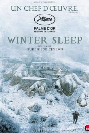 Image Winter Sleep