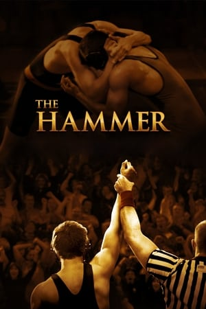 Image The Hammer
