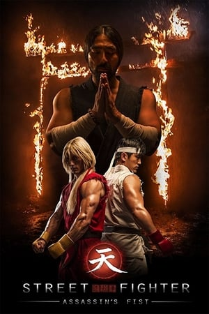 Street Fighter : Assassin's Fist