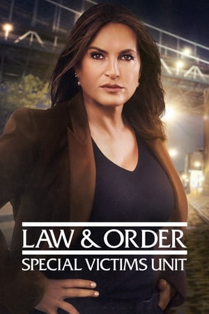 Poster Law & Order: Special Victims Unit 1999