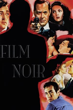 Image Film Noir: Bringing Darkness to Light