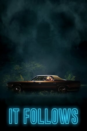 Poster It Follows 2015