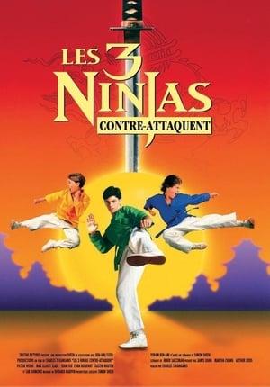 Ninja Kids : Les 3 Ninjas Contre-Attaquent