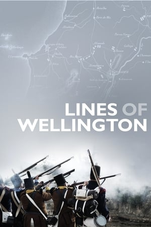 Image Lines of Wellington