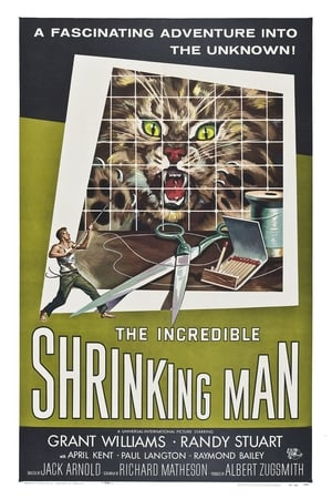 Image The Incredible Shrinking Man