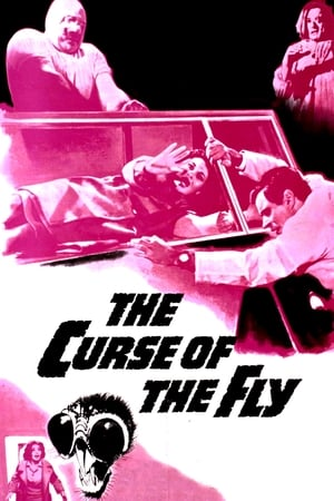 Image Curse of the Fly