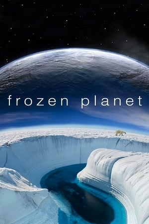Image Frozen Planet