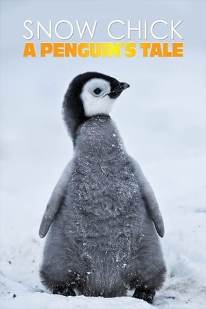 Image Snow Chick - A Penguin's Tale