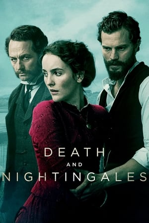 Image Death and Nightingales
