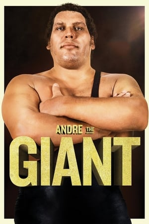 Image Andre the Giant