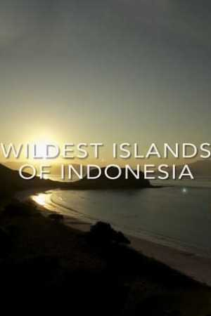 Image Wildest Islands of Indonesia