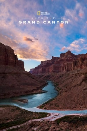 Image Into the Grand Canyon