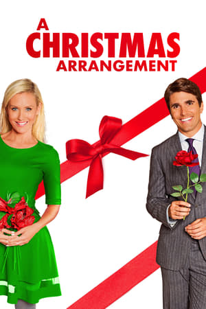Image A Christmas Arrangement