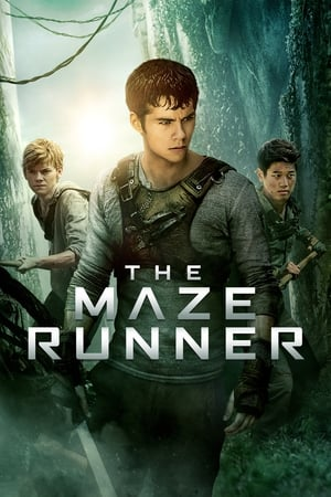 Poster The Maze Runner 2014