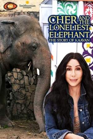 Image Cher & the Loneliest Elephant