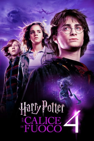 Image Harry Potter e il calice di fuoco