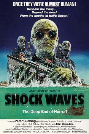 Image Shock Waves