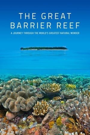 Image Great Barrier Reef