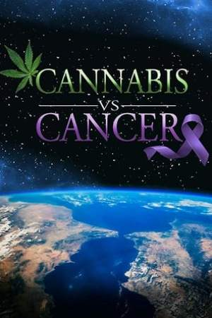 Image Cannabis VS Cancer