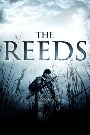 Image The Reeds