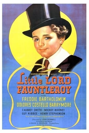 Image Little Lord Fauntleroy