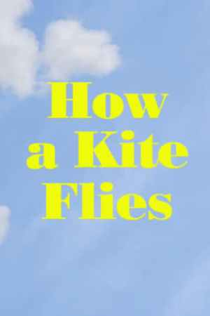 Image How a Kite Flies