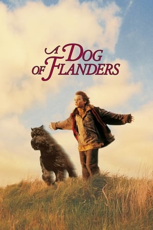 Image A Dog Of Flanders