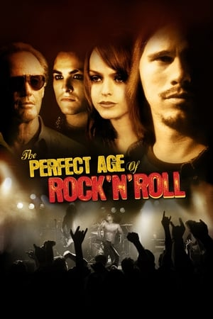 Image The Perfect Age of Rock 'n' Roll