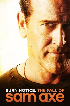 Image Burn Notice: The Fall of Sam Axe